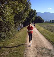 Bieler Lauftage 2009 100 km